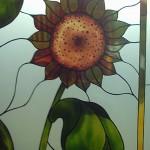 Decorazione su vetro satinato